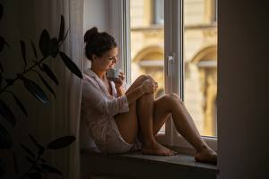 Bilder Fenster Sitzt Bein Shorts Tasse Lächeln junge frau