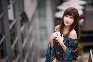 Fotos Asiaten Bokeh Hand Blick Süße Braune Haare Mädchens