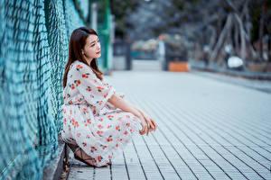 Fonds d'écran Asiatique Aux cheveux bruns Assises Les robes Bokeh Clôture jeune femme