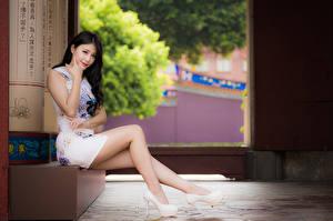 Bilder Asiatische Brünette Sitzen Bein Starren Hübsche Mädchens