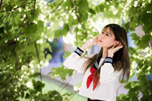Fotos Asiaten Schulmädchen Hand Ast Unscharfer Hintergrund junge frau