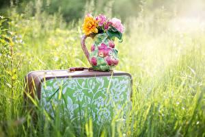 Pictures Bouquet Grass Suitcase Vase Blurred background flower
