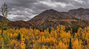 Bilder Kanada Park Herbst Berg Banff Bäume