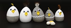 Desktop hintergrundbilder Haushuhn Ostern Kreative Hühner Eier