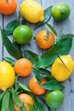 Picture Citrus Lemons Lime Mandarine Wood planks Foliage