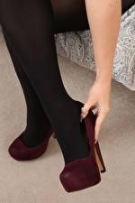 Fotos Nahaufnahme Bein Stöckelschuh Strumpfhose junge Frauen