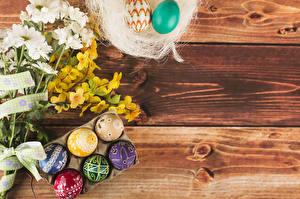 Bilder Ostern Chrysanthemen Bretter Ast Ei Mehrfarbige Vorlage Grußkarte