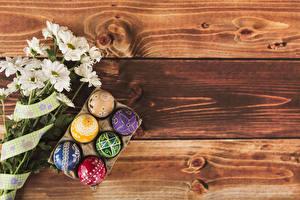 Hintergrundbilder Ostern Chrysanthemen Bretter Eier Design Vorlage Grußkarte das Essen Blumen