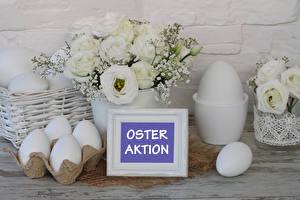 Fotos Ostern Eustoma Weiß Ei Wort Deutsche Blumen Lebensmittel