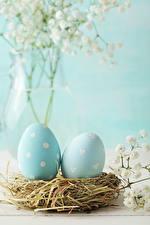 Image Easter Nest Egg 2 Light Blue Straw Food