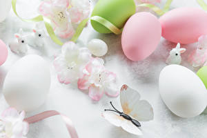 Images Easter Rabbits Butterflies Eggs Ribbon Food