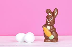 Фотография Пасха Кролик Шоколад Яйца Яйцо Пища