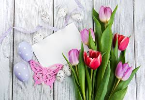 Images Easter Tulip Eggs Wood planks Sheet of paper Template greeting card Flowers
