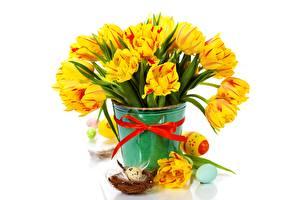 Bilder Ostern Tulpen Weißer hintergrund Eier Eimer