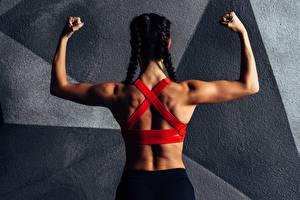 Hintergrundbilder Fitness Hinten Rücken Hand Zopf sportliches Mädchens