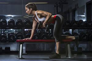 Hintergrundbilder Fitness Bank (Möbel) Trainieren Hand Bein Hanteln Mädchens