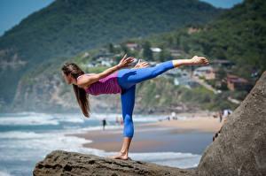 Fotos Fitness Joga Posiert Körperliche Aktivität Bein junge frau