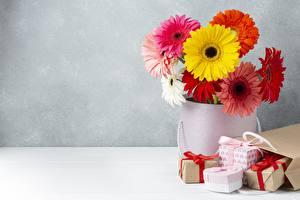 Bilder Gerbera Blumensträuße Vase Tüte Geschenke Blüte