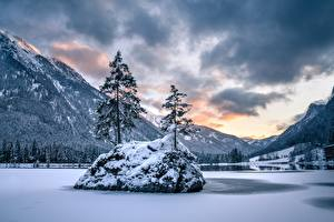 Fotos Deutschland Winter See Berg Bayern Bäume Alpen Schnee Berchtesgaden National Park, Hintersee Lake Natur