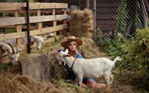 桌面壁纸,,家山羊 山羊屬,乾草,帽子,Evgenia Pyatnitskaya, Polina Mishina,年輕女性,動物,