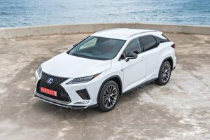 Bilder Lexus Weiß 2019-20 RX 450h F SPORT Worldwide