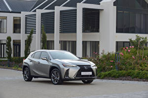 Fotos Lexus Graues Metallisch 2019 UX 200 F SPORT automobil