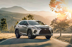 Wallpaper Lexus Silver color 2020 RX 350 F SPORT