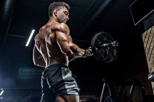 Fotos Mann Hantelstange Muskeln Turnhalle Körperliche Aktivität Rücken sportliches