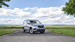Bilder Opel Grau Metallisch Ein Van  auto