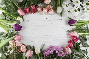 Hintergrundbilder Rose Tulpen Chrysanthemen Alstroemeria Bretter Vorlage Grußkarte Blüte