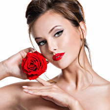 Picture Rose White background Brown haired Face Red lips Hands Glance Model Beautiful female