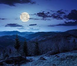 Fotos Himmel Berg Nacht Mond Wolke Fichten Natur