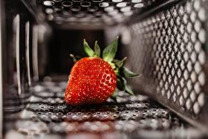 Bilder Erdbeeren Unscharfer Hintergrund Lebensmittel
