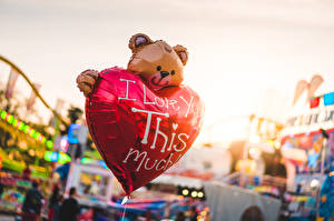 Picture Teddy bear Blurred background English Lettering Heart Balloons