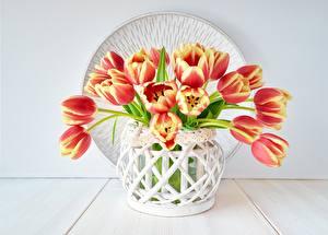 Fotos Tulpen Blumensträuße Vase Blüte