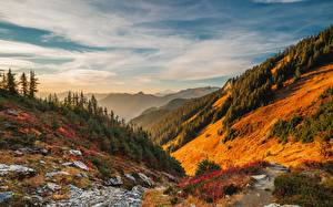 Photo USA Forests Mountain Scenery Sky Washington Trees Clouds North Cascades National Park, Mount Baker Nature