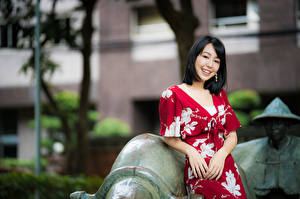 Fotos Asiaten Unscharfer Hintergrund Brünette Kleid Lächeln junge Frauen