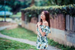 Fotos Asiaten Unscharfer Hintergrund Kleid Hand Starren junge frau