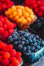 Hintergrundbilder Beere Viel Heidelbeeren Lebensmittel