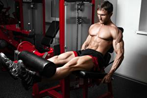 Wallpaper Bodybuilding Men Gym Workout Legs Belly Hands Muscle sports