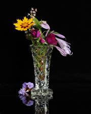Image Bouquet Black background Vase flower