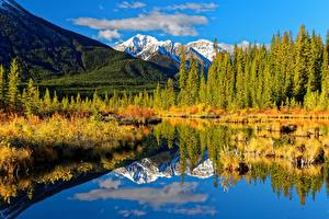 Photo Canada Forest Mountain Lake Autumn Landscape photography Banff Reflected Alberta Nature