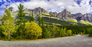 Image Canada Park Mountain Forest Landscape photography Trees Nature