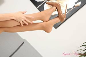 Hintergrundbilder Großansicht Hand Bein Stöckelschuh Strumpfhose junge Frauen