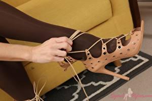 Bilder Großansicht Bein High Heels Strumpfhose junge Frauen