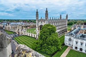 Фото Англия Здания Газоне King's College Cambridge Города