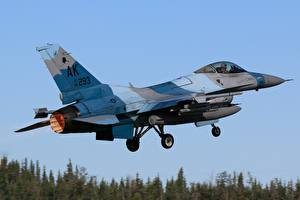 Bilder Jagdflugzeug Flugzeuge F-16 Fighting Falcon Abheben Luftfahrt