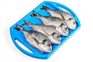 Hintergrundbilder Fische - Lebensmittel Weißer hintergrund