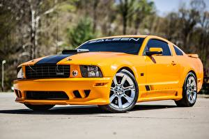 Image Ford Yellow Metallic Mustang, S302, Saleen, Extreme, 2008 Cars