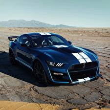 Fotos Ford Blau Strips Mustang Shelby GT500 2019 Autos